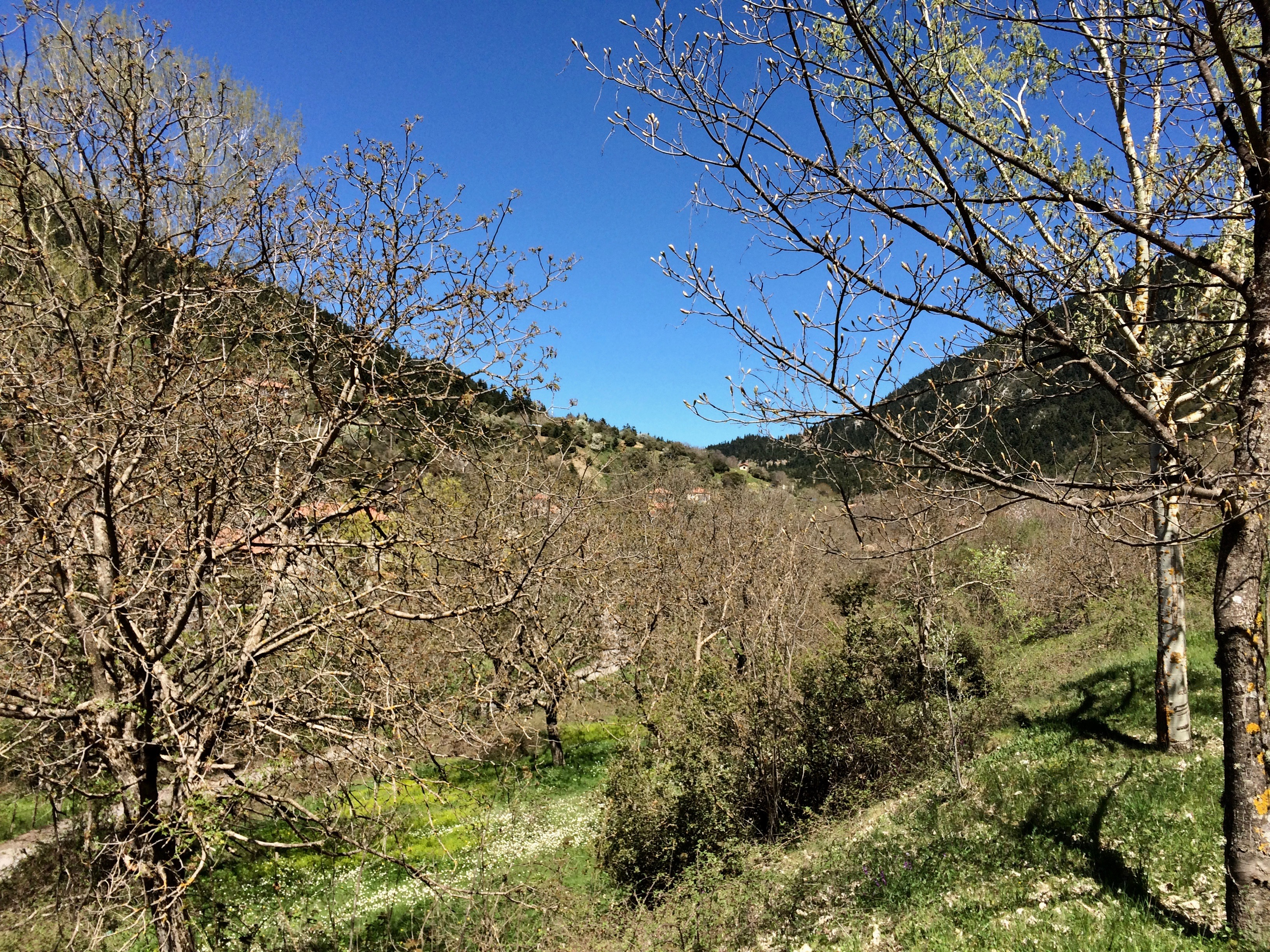 Hiking in Greece: A Step Towards Sustainable Tourism