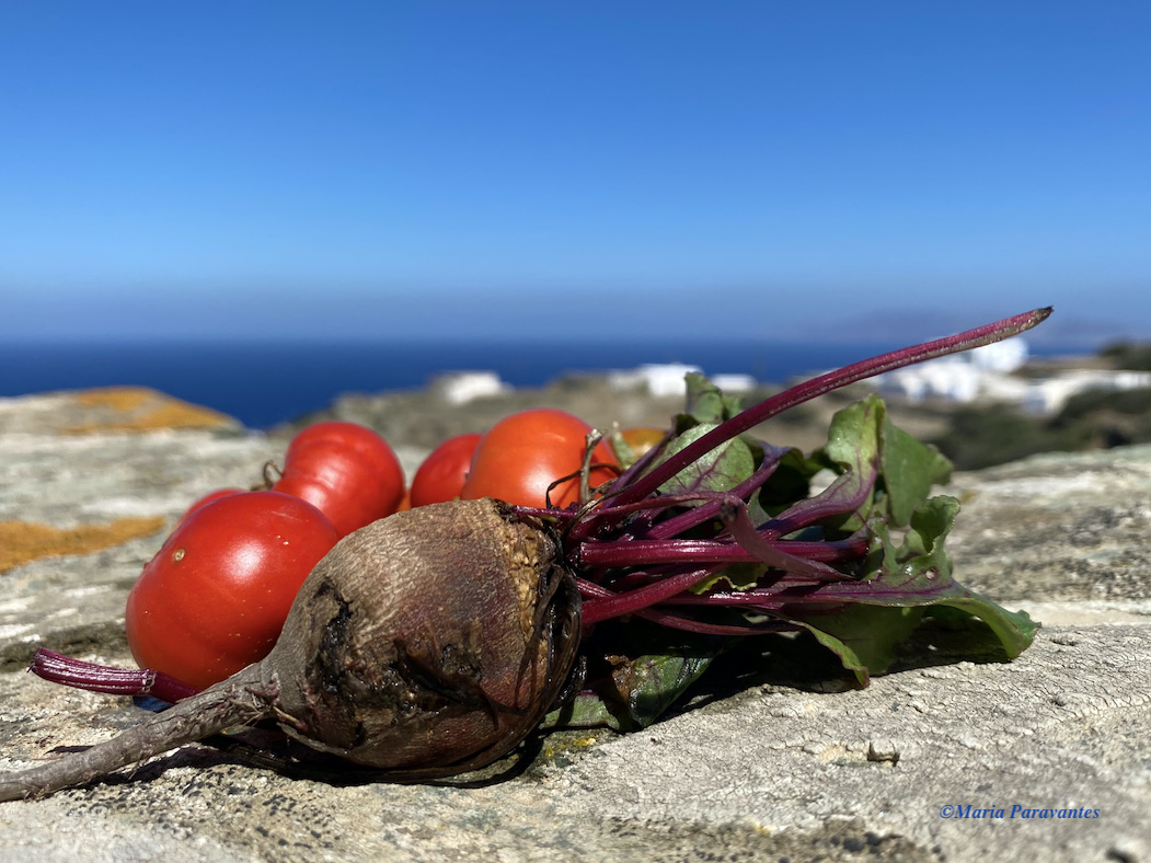 23 Greek Products in Slow Food's Ark of Taste